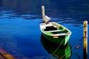 עיטור ירוק לאגם כחול