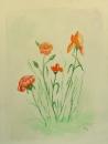 פרחי שדה 1