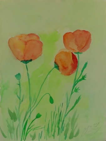 פרחי שדה 2