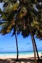 חוף קסום קובה