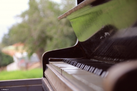 הפסנתר