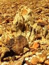 סלעים ואבנים