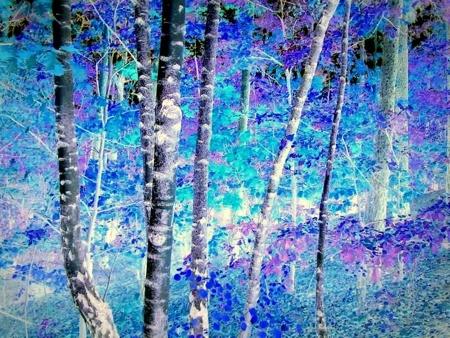 היער הכחול
