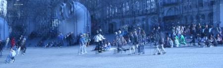קהל בכיכר