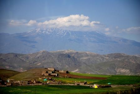 הר אררט