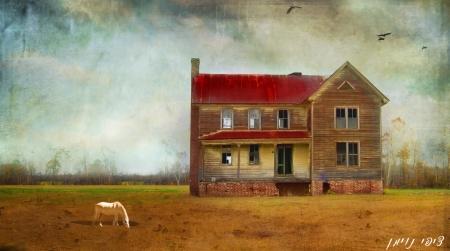 בית גדול בערבה