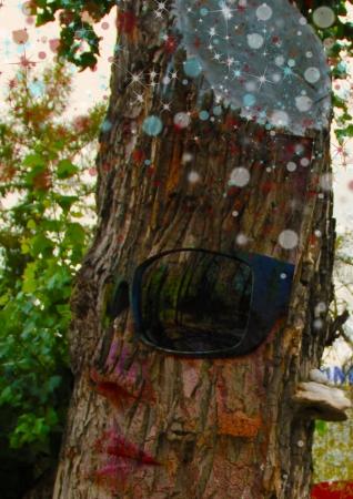 עץ במשקפיים