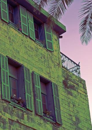 חלונות ירוקים