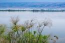 אגם שליו
