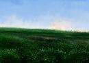 מרומי שדה