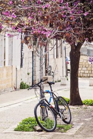 אופניים בנחלאות