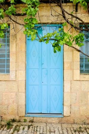 דלת טורקיז בימין משה (2)
