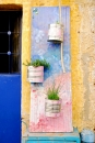 שער עם צמחים