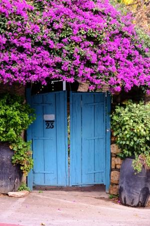 שער טורקיז עם פרחים