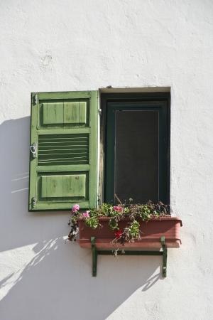 חלון ירוק