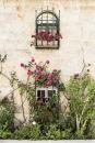 חלון עם ורדים