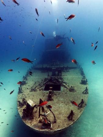 ספינה צוללן דגים