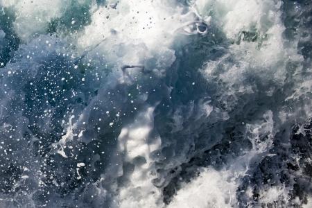 בתוך המים
