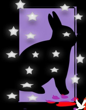 ארנב קסם