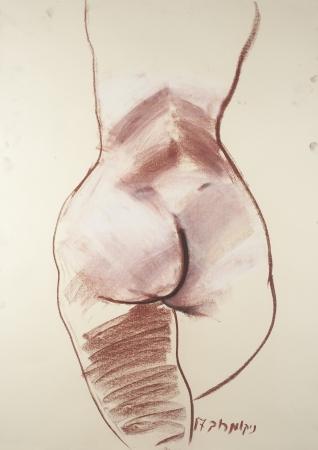 עירום מן הגב