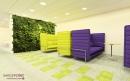 עיצוב של עיצוב משרד הייטק צמחיה | עיצוב פנים