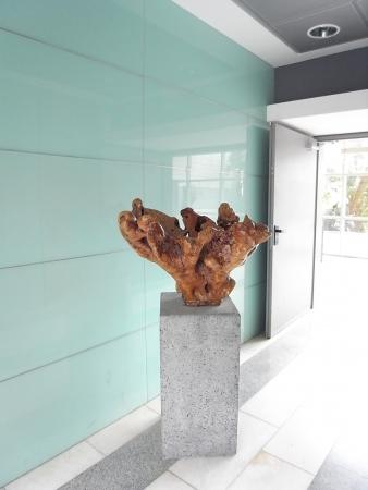 עיצוב של פסל   עיצוב פנים
