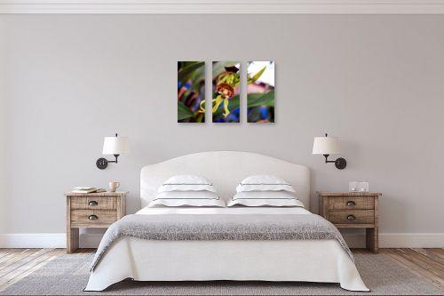 תמונה לחדר שינה - ארי בלטינשטר - סחלב  10 - מק''ט: 127703