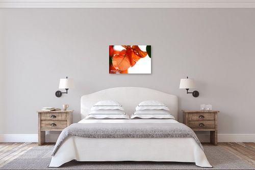 תמונה לחדר שינה - איה אפשטיין - בוגנביליה - מק''ט: 12819