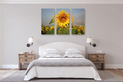 תמונה לחדר שינה - אייל הצפון - שדה חמניות - מק''ט: 141682