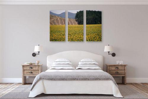 תמונה לחדר שינה - אורלי שטטינר - שדה חמניות וגבעות - מק''ט: 145718