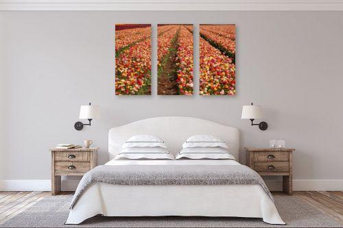 תמונה לחדר שינה - אייל הצפון - שלל צבעים - מק''ט: 147335