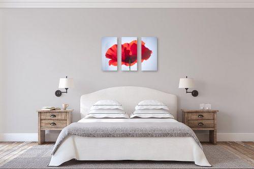 תמונה לחדר שינה - איה אפשטיין - פרג בשמש 2# - מק''ט: 175429