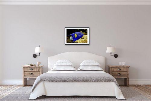 תמונה לחדר שינה - ענת שיוביץ - קליידוסקופ מימי - מק''ט: 179785