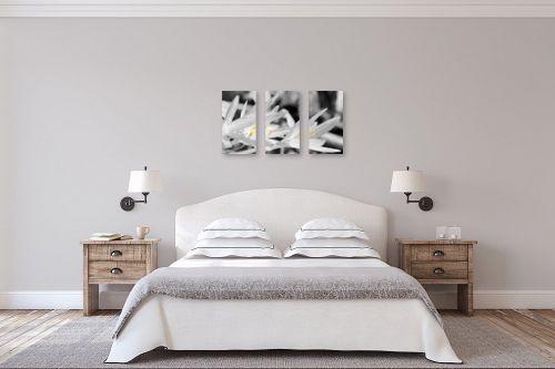 תמונה לחדר שינה - ארי בלטינשטר - סיתוונית בשחור לבן וצבע - מק''ט: 192517