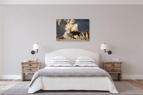 תמונה לחדר שינה - ארי בלטינשטר - בוקר טוב מידבר 03 - מק''ט: 193818