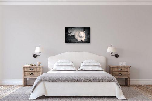 תמונה לחדר שינה - עידן גיל - לבן - מק''ט: 210751