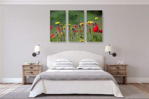 תמונה לחדר שינה - אורי ברוך - אביב בפתח - מק''ט: 217088
