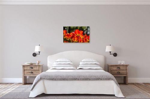 תמונה לחדר שינה - דורית ברקוביץ - אורות אדומים - מק''ט: 261247