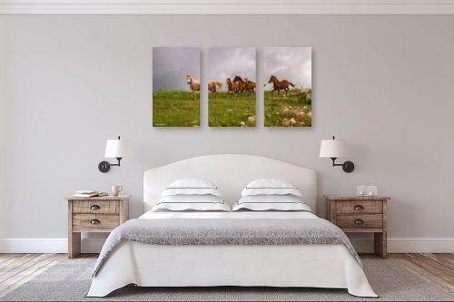 תמונה לחדר שינה - מיכאל שמידט - הגולן הפרוע.. - מק''ט: 263094