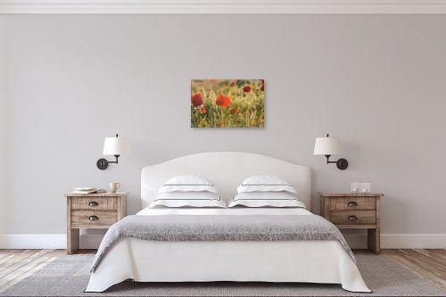 תמונה לחדר שינה - איזבלה אלקבץ - כלניות - מק''ט: 266926