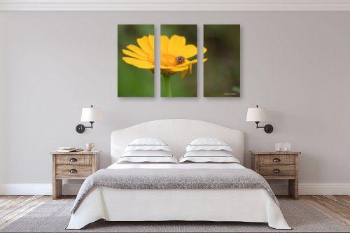 תמונה לחדר שינה - איזבלה אלקבץ - אורח על הפרח - מק''ט: 268021