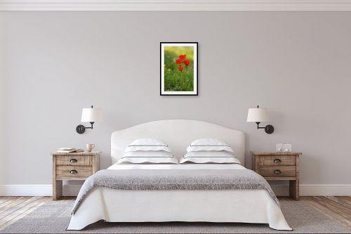 תמונה לחדר שינה - איזבלה אלקבץ - כלניות - מק''ט: 278946
