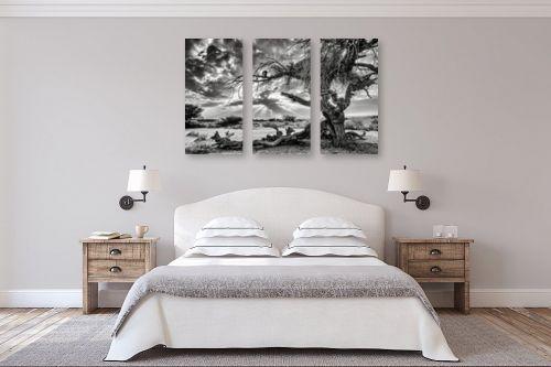 תמונה לחדר שינה - ארי בלטינשטר - שקיעה בשחור ולבן. - מק''ט: 279322