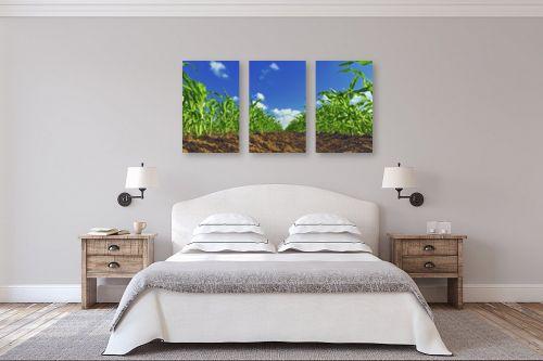 תמונה לחדר שינה - DnD Production - תירס - מק''ט: 290086
