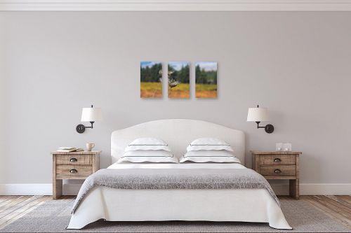 תמונה לחדר שינה - מיכאל שמידט - פשטות של הטבע.. - מק''ט: 293501