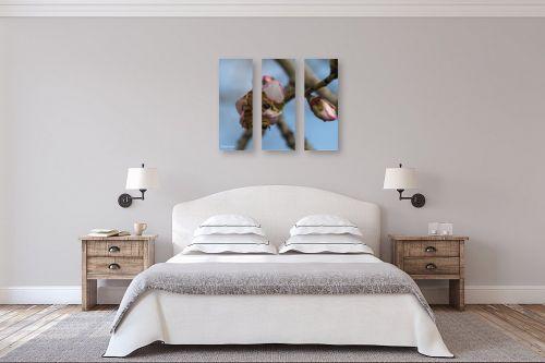 תמונה לחדר שינה - אלעד דרור - דאבל בי - מק''ט: 312873