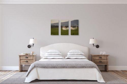תמונה לחדר שינה - אלעד דרור - מרססים מהאויר - מק''ט: 312987
