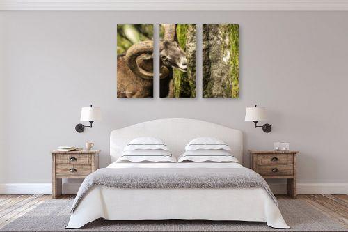 תמונה לחדר שינה - ענת שיוביץ - בתיאבון - מק''ט: 319556