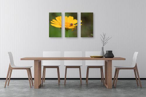תמונה לפינת אוכל - איזבלה אלקבץ - אורח על הפרח - מק''ט: 268021
