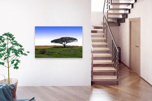 תמונה לבית - קובי פרידמן - עץ השדה - מק''ט: 19600
